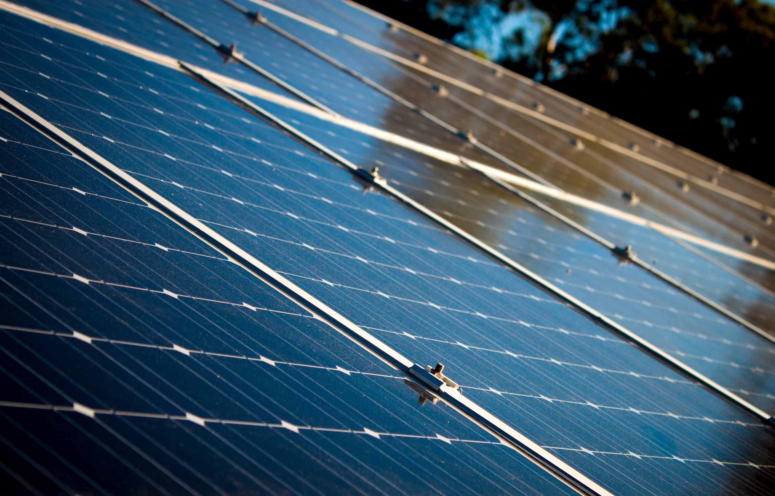 Closeup of rooftop PV solar panels on a beautiful, sunny day, with the trees in the background reflecting off the panel's shiny surface.