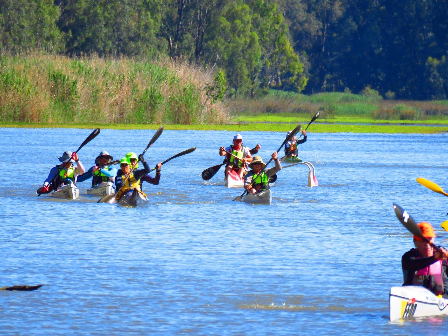 Competitors paddling down the Murray River